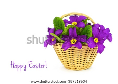 Happy Easter: Flowers in the basket isolated on white background - stock photo