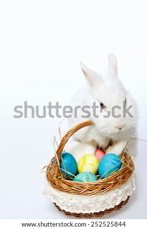 Happy Easter. Low angle image of a cute white bunny holding with paws the cane basket full of colored Easter eggs isolated on white background - stock photo
