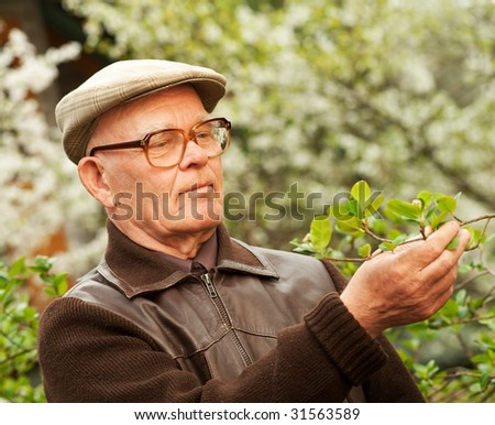 Happy elderly man in a garden - stock photo