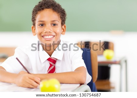 happy elementary schoolboy studying in classroom