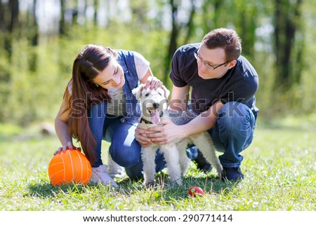 happy family dog staring at the summer park - stock photo
