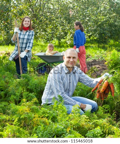 Happy family is picking carrot in field - stock photo