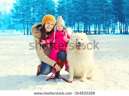 Happy family mother and child with white Samoyed dog walking in winter park - stock photo