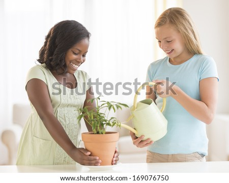Happy female friends watering potted plant at home - stock photo