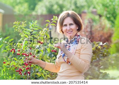 happy female-gardener a farmer harvests cherry - stock photo