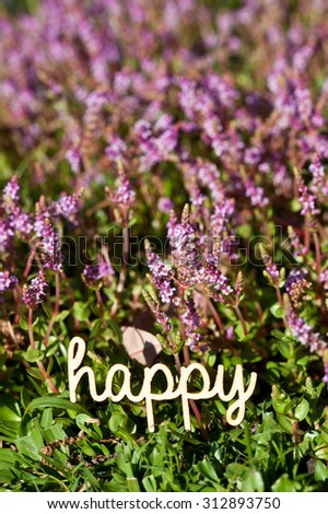 "Happy - Flowers 1 - wooden word ""happy"" against natural wild flower background"