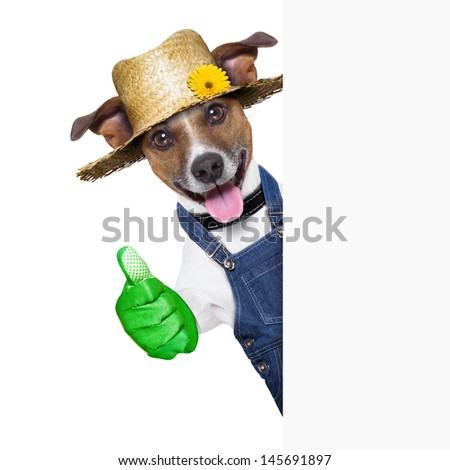 happy gardener dog with thumb up behind a placard