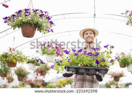 Happy gardener holding flower pots in crate at greenhouse - stock photo