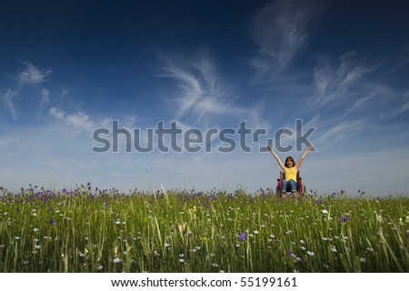 Happy handicapped woman on a wheelchair over a green meadow - stock photo