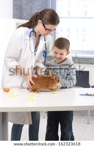 Happy kid at vet with rabbit, feeding bunny food, carrot, lettuce, veterinary examining pet on table,