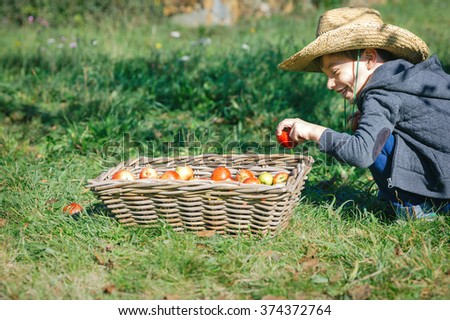 Happy kid putting apple in wicker basket with harvest - stock photo
