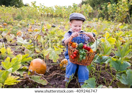 Happy kid sitting on pumpkin's field with basket of vegetables