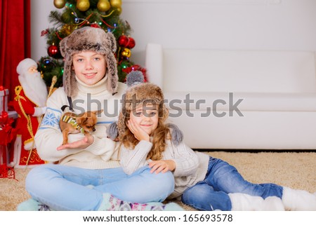 Happy kids playing with dog chihuahua  - stock photo