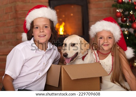 Happy kids with the best Christmas present - a newly received puppy dog - stock photo