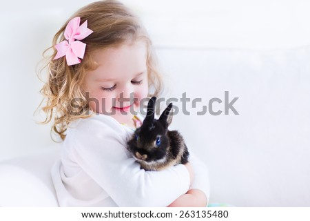 Happy laughing little girl playing with a baby rabbit, hugging her real bunny pet and learning to take care of an animal. Child on a white couch at home or kindergarten. - stock photo