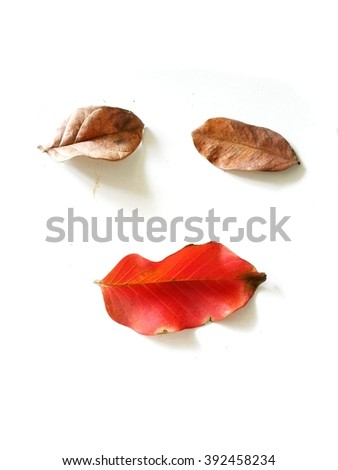 Happy,Leaves on a white background,The art of designing and putting - stock photo