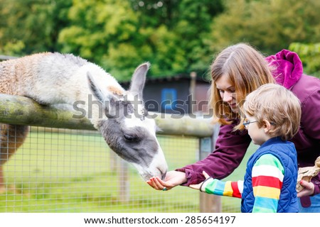Kids On Farm Stock Images RoyaltyFree Images Vectors - Mother takes amazing pictures ever children animals farm