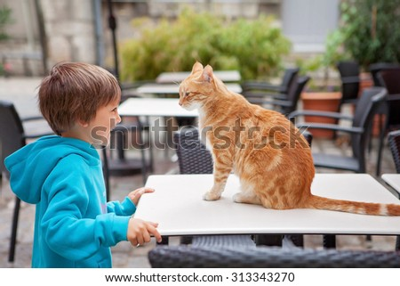 Happy little boy, child, playing with lovely little domestic royal cat outdoors - stock photo