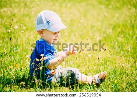 Happy Little Boy Child Sit In Green Grass Meadow, Park, Summer Sunny Day Outdoor - stock photo