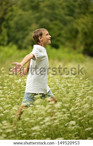 happy little boy in a summer field