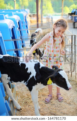 Happy little girl strokes black and white calf at cow farm at summer day. - stock photo