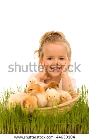 Happy little girl with a basket full of small chickens - isolated - stock photo