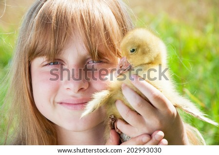Happy little girl with gosling - stock photo