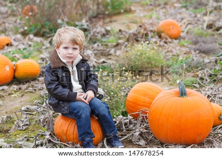 Happy little toddler boy having fun on pumpkin field on cold autumn day
