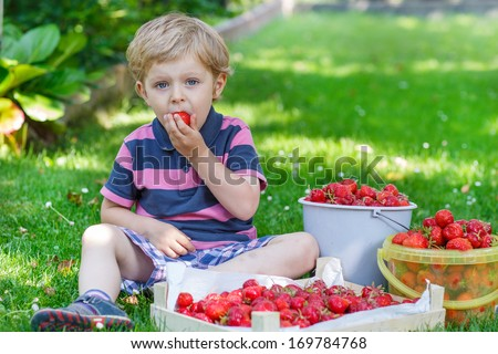 Happy little toddler boy in summer garden with buckets of ripe fresh strawberries - stock photo
