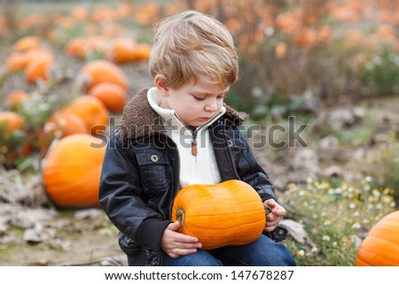 Happy little toddler boy on pumpkin field on cold autumn day