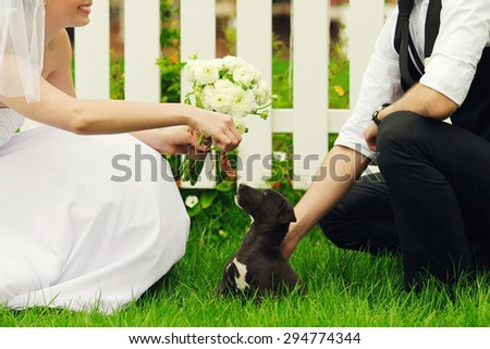 Happy married couple playing with little black puppy. Bride's hands with wedding bouquet of beige flowers over white wooden fence and green lawn. Country vintage style. Outdoor shot