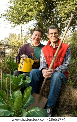 Happy mature couple in their vegetable garden - stock photo