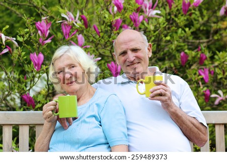 Happy mature family, loving senior couple drinking tea from big colorful mugs sitting on a wooden bench in the garden at the backyard of their house next to blooming magnolia tree