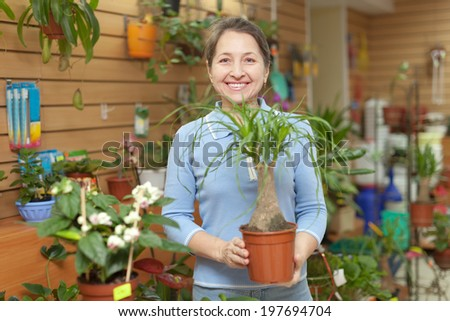 Happy mature woman chooses Nolina in pot at flower shop