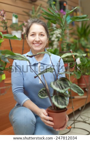 Happy mature woman with  Calathea plant in pot at flower store - stock photo