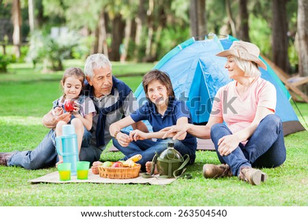 Happy multi generation family camping in park - stock photo
