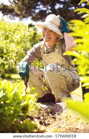 Happy older woman gardening in backyard looking at camera smiling - stock photo