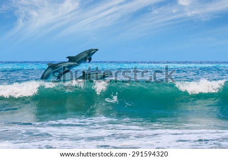 happy playful dolphins leaping from sea breaking surfing wave to foam - stock photo