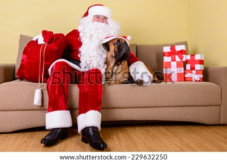 happy Santa Claus with dog in the interior - stock photo