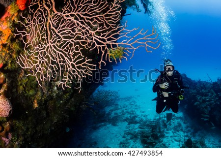 Happy SCUBA diver on a coral reef wall - stock photo