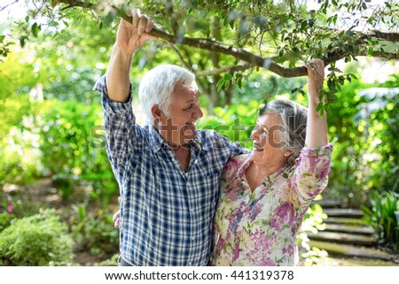 Happy senior couple holding branch in back yard