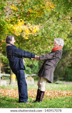 Happy senior couple holding hands in the park - stock photo