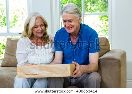 Happy senior couple holding parcel while sitting in living room at home - stock photo