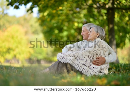 Happy senior couple sitting in autumn park - stock photo