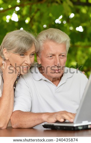 Happy senior couple sitting in summer at table with laptop - stock photo