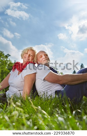 Happy senior couple sitting on a meadow in summer