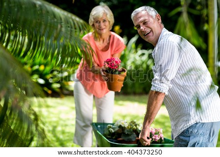 Happy senior couple with wheelbarrow and flower pot in yard - stock photo