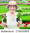 Happy senior woman holding flowers in garden - stock photo