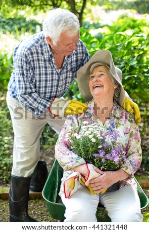 Happy senior woman sitting in wheelbarrow while looking at husband in garden - stock photo