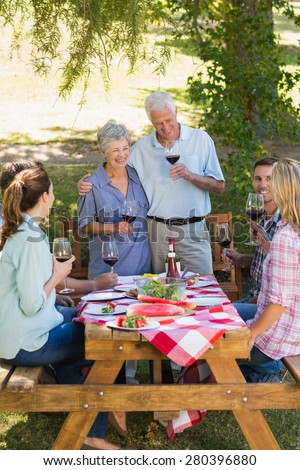 Happy seniors toasting with their family on a sunny day - stock photo